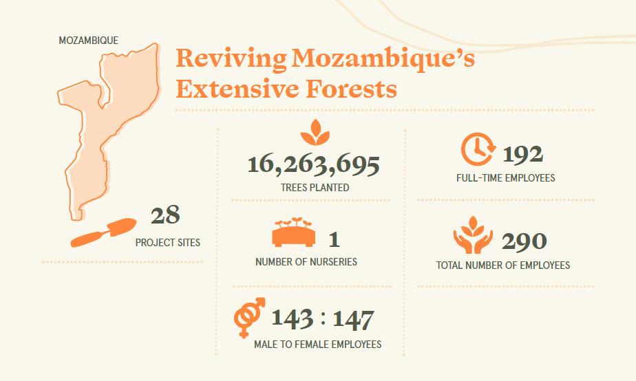 cifras eden forest Mozambique